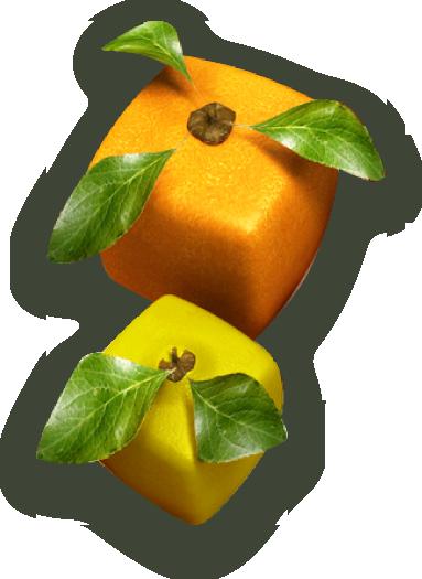 Quadratische Früchte
